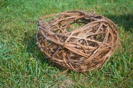 Random weave, wild grapevine